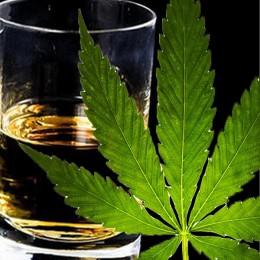 Alkohol Vs Konope