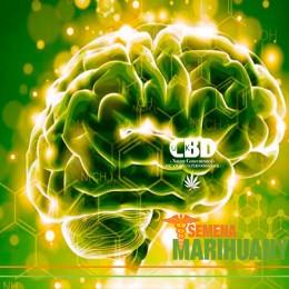 5 vynikajících léčebných účinků CBD