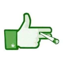 Google a Facebook nebudou zveřejňovat reklamy na marihuanu a to ani ve státech, kde je legální