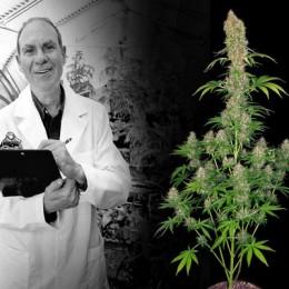 Ed Rosenthal - Konopný guru a otec odrůdy Super Bud
