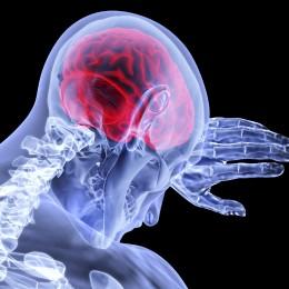 Léčebné konopí a budoucnost neurologie (STUDIE)