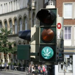GreenLight bojuje za prosazení léčebného konopí v Evropě