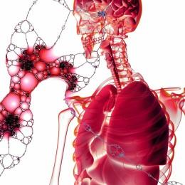 Konopný flavonoid pre liečbu rakoviny pankreasu?