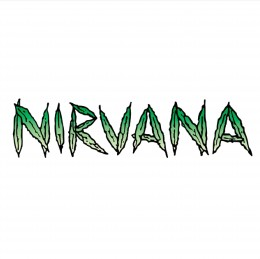 Seedbanka Nirvana Seeds