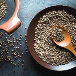 Konopné semínko: Účinky, využití a recepty