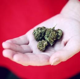 Jak se účinně zbavit THC v těle?
