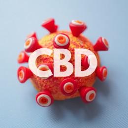 CBD jako pomoc při léčbě onemocnění COVID-19?
