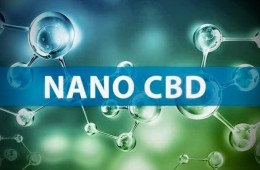 Nano CBD: Čo je nanomedicína, jej výhody a nevýhody