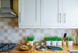 Vaření s CBD: Tipy pro vaření doma