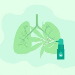 Napomáha CBD zmierňovať astma?