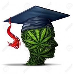 Konopné školy a vzdelávacie kurzy