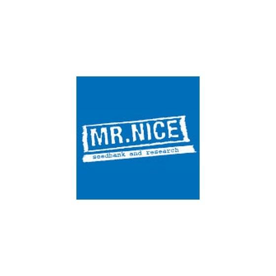 Seedbanka Mr. Nice