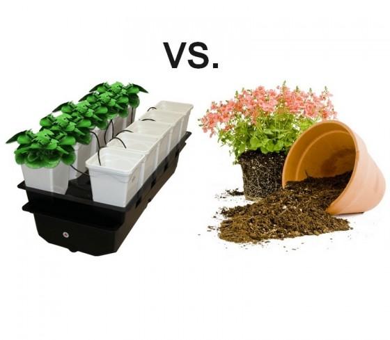 Substrát vs. hydropónia