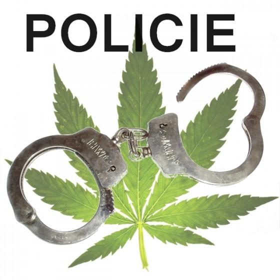 Ako je to so zákonmi - legalita marihuany