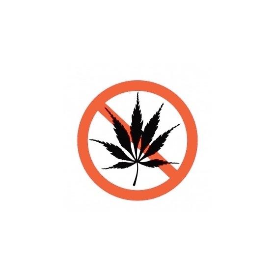 Symptómy pri predávkovaní marihuanou