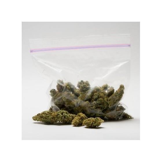 6 tipov pre správne skladovanie lekárskej marihuany