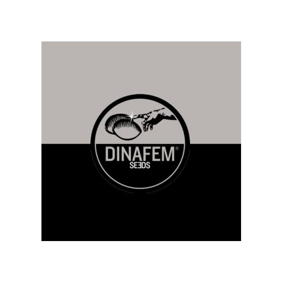 Seedbanka Dinafem - v čom spočíva úspech