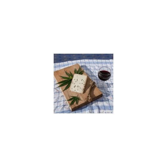 Cheese - když voní konopí po sýru