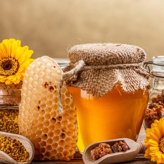 Medové Konopí