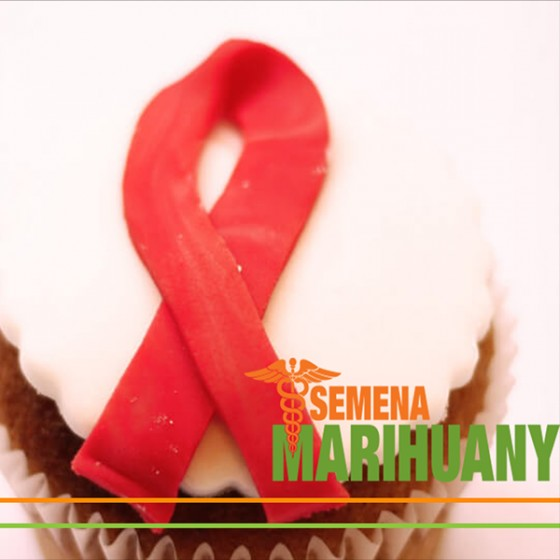 Léčba HIV pomocí kanabinoidů