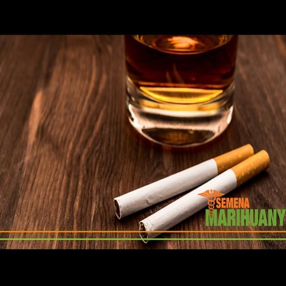 Konope ako náhrada Tabaku, Alkoholu a iných drog