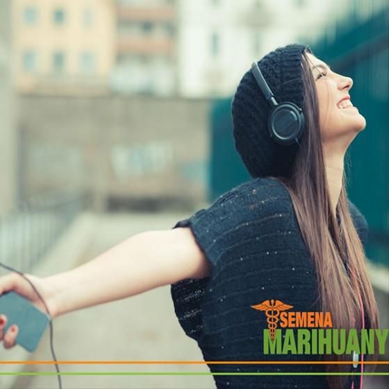 Hudba znie pod vplyvom konope lepšie. Prečo?