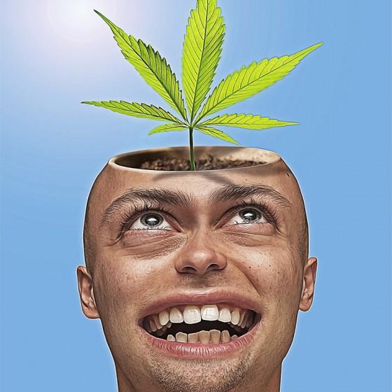 7 Náznakov pre Pauzu od Konope (Abstinenčné príznaky pri Užívanie Marihuany?)