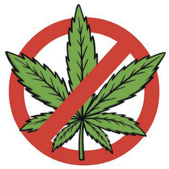 """YouTube maže videá s """"marihuanou"""". Prečo?"""