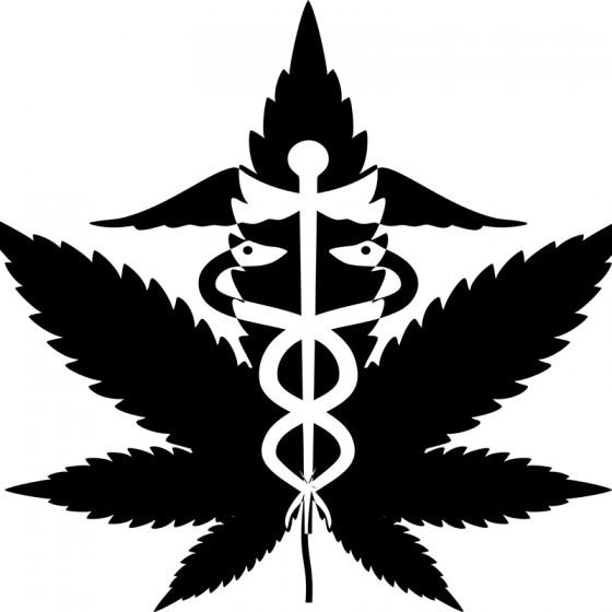 Doktoři si vyžadují více informací o konopí (výsledek studie)