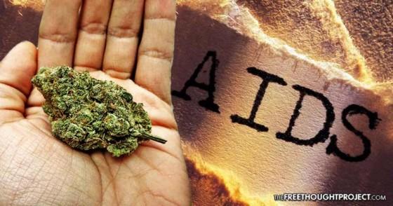 Krátkodobé účinky kanabinoidů u pacientů s infekcí HIV-1