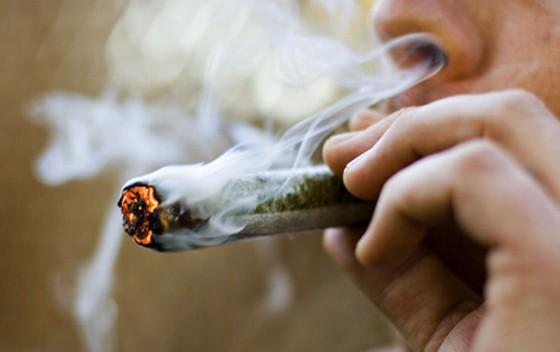 Anatomie jointu - porovnání teoretické a skutečné dávky konopí a tabáku vjointu