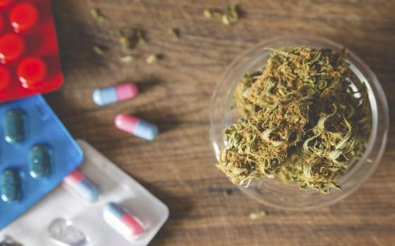 Může lékařská marihuana pomoci omezit opiátovou epidemii?