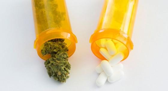 Studie - Teenageři používají opiáty často v kombinaci s marihuanou