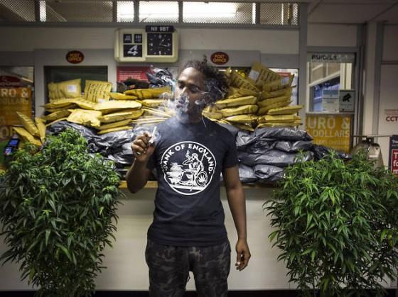 Marihuana je prevencí proti tvrdým drogám, tvrdí studie