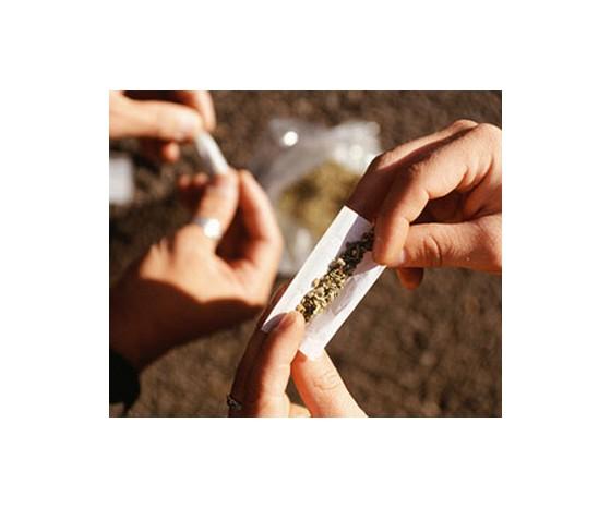 Fyziologie marihuany