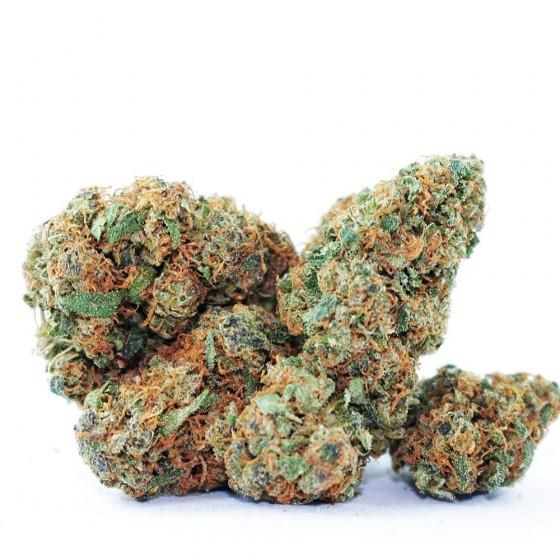 Toxická psychóza z léčebného konopí - Můžete se z marihuany zbláznit?
