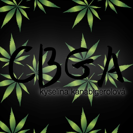Čo je zač CBGA (kyselina kanabigerolová)?