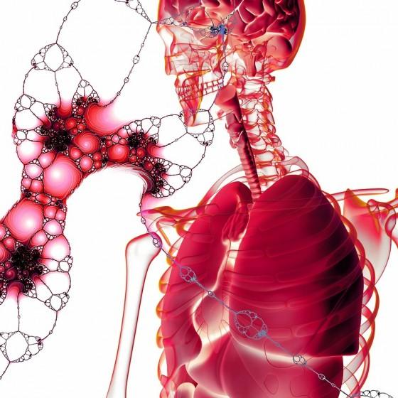 Konopný flavonoid pro léčbu rakoviny slinivky?