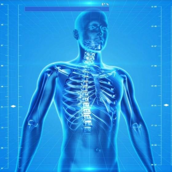 Vplyv CBD na endokanabinoidovej systém